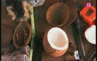 Gallina de guinea, cullera de coco i massatge terapeutic