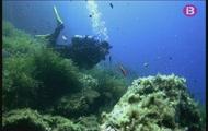 Immersió a Menorca